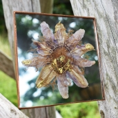 goldpurplepassionflower.2